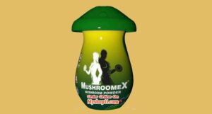 Mushroom Powder at Best Price in India