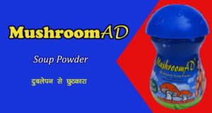 Mushroom Weight Gain Powder Wholesalers